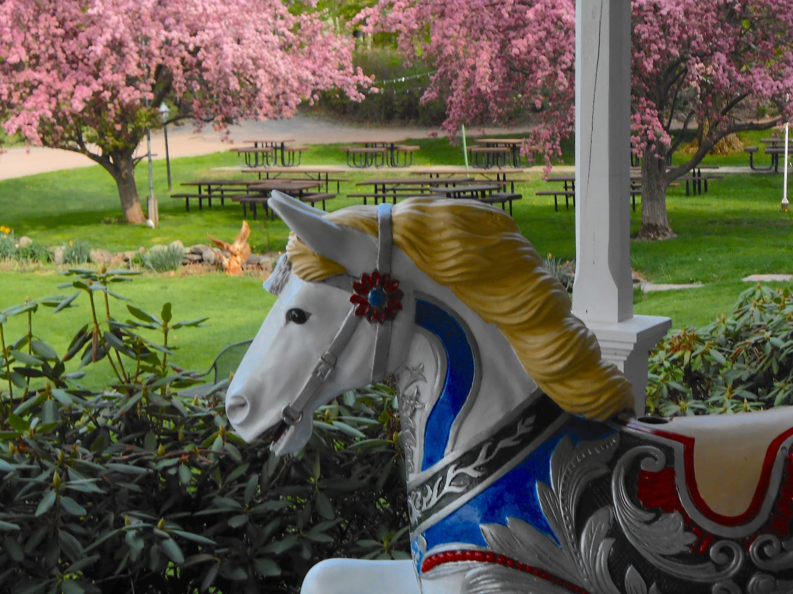 Carousel horse on the patio.
